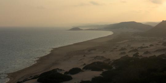 golden beach at sunset